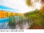 Autumnal lake near the forest. Стоковое фото, фотограф Zoonar.com/Dmitry Kushch / age Fotostock / Фотобанк Лори