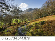 The Borrowdale Valley from Johnny Woo below High Doat near Seatoller... Стоковое фото, фотограф Craig Joiner / age Fotostock / Фотобанк Лори