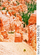 View from viewpoint of Bryce Canyon. Utah. USA. Стоковое фото, фотограф Zoonar.com/Dmitry Kushch / age Fotostock / Фотобанк Лори