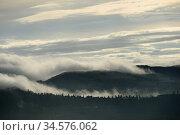 Tuscan landscape (2012 год). Стоковое фото, фотограф Знаменский Олег / Фотобанк Лори
