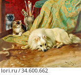 Barker Wright - Spitz Dog with Two Kittens Beside an Artist's Brush... Стоковое фото, фотограф Artepics / age Fotostock / Фотобанк Лори