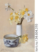 Bramley Frank - Daffodils and Narcissi - British School - 19th Century... Стоковое фото, фотограф Artepics / age Fotostock / Фотобанк Лори