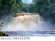 RF - Maliau Falls, Maliau River. Centre of Maliau Basin - Sabah, Borneo. (This image may be licensed either as rights managed or royalty free.) Стоковое фото, фотограф Nick Garbutt / Nature Picture Library / Фотобанк Лори