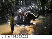 Tourists enjoy elephant shower at Sahakari Spice Farm Ponda Goa India. Стоковое фото, фотограф Andrew Woodley / age Fotostock / Фотобанк Лори