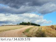 Tuscan rural landscape (2012 год). Стоковое фото, фотограф Знаменский Олег / Фотобанк Лори