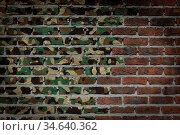 Dark brick wall texture - flag painted on wall - Army camouflage. Стоковое фото, фотограф Zoonar.com/Micha Klootwijk / age Fotostock / Фотобанк Лори