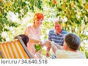 Glückliche Gruppe Senioren im Garten mit Kaffee und Obst. Стоковое фото, фотограф Zoonar.com/Robert Kneschke / age Fotostock / Фотобанк Лори