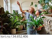 Zwei Floristen von Eventfloristik haben eine Deko Idee beim Catering. Стоковое фото, фотограф Zoonar.com/Robert Kneschke / age Fotostock / Фотобанк Лори