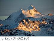 Weisshorn mountainpeak Leukerbad, Wallis, Valais, Switzerland, March. Стоковое фото, фотограф David Pattyn / Nature Picture Library / Фотобанк Лори