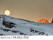 Moonrise over a mountain landscape in the evening. Leukerbad, Wallis, Valais, Switzerland, March. Стоковое фото, фотограф David Pattyn / Nature Picture Library / Фотобанк Лори