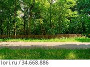 Leere Straße durch grüne Natur im Sommer als Hintergrund. Стоковое фото, фотограф Zoonar.com/Robert Kneschke / age Fotostock / Фотобанк Лори