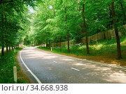 Leere zweispurige Straße mit Kurve in der Natur. Стоковое фото, фотограф Zoonar.com/Robert Kneschke / age Fotostock / Фотобанк Лори