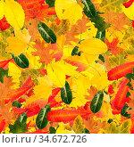 Nathloser kachelbarer Hintergrund und Muster aus buntem Laub im Herbst. Стоковое фото, фотограф Zoonar.com/Robert Kneschke / age Fotostock / Фотобанк Лори