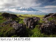 Tolbachik volcano surroundings. Редакционное фото, фотограф Вита Фортуна / Фотобанк Лори