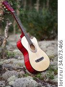 Musical instruments - guitar. Редакционное фото, фотограф Вита Фортуна / Фотобанк Лори