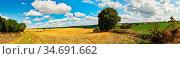 Landschaft Panorama Hintergrund mit Feld und einem blauen Himmel ... Стоковое фото, фотограф Zoonar.com/Robert Kneschke / age Fotostock / Фотобанк Лори