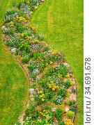 Viele bunte Blumen blühen auf einer grünen Wiese im Sommer. Стоковое фото, фотограф Zoonar.com/Robert Kneschke / age Fotostock / Фотобанк Лори