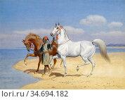 Harington Bird John Alexander - Desert Rider - British School - 19th... Редакционное фото, фотограф Artepics / age Fotostock / Фотобанк Лори