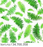 Watercolor seamless pattern of fern leaves. Botanic seamless background. Hand drawn green leaves. Стоковое фото, фотограф Nataliia Zhekova / Фотобанк Лори