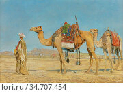 Lewis John Frederick - Bedouin and Two Camels in the Desert 1 - British... Редакционное фото, фотограф Artepics / age Fotostock / Фотобанк Лори