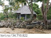 На одном из островов архипелага Фиджи (2019 год). Стоковое фото, фотограф Юрий Хабаров / Фотобанк Лори