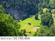 Mountain in Switzerland (2019 год). Стоковое фото, фотограф Коваленкова Ольга / Фотобанк Лори
