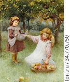Affleck William - Collecting Apples - British School - 19th Century. Стоковое фото, фотограф Artepics / age Fotostock / Фотобанк Лори