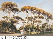 Cromek Thomas Hartley - the Borghese Gardens Rome - British School... Стоковое фото, фотограф Artepics / age Fotostock / Фотобанк Лори