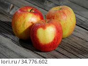 Malus domestica Jonagored, Apfel, Apple, Herz auf Schale, heart on... Стоковое фото, фотограф Zoonar.com/Peter Himmelhuber / age Fotostock / Фотобанк Лори