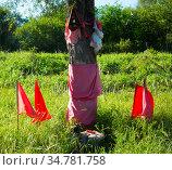 Red flags in honor of Gauchito Gil, Argentina. Стоковое фото, фотограф Яков Филимонов / Фотобанк Лори