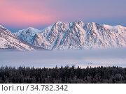 Mt. Moran at sunrise in Grand Teton Natioanl Park, Wyoming, USA. January 2016. Стоковое фото, фотограф Jeff Vanuga / Nature Picture Library / Фотобанк Лори