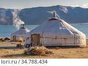 Nomadic herder's camp, two gers / yurts, Alti Mountains, Western Mongolia. Fall. October 2011. Стоковое фото, фотограф Jeff Foott / Nature Picture Library / Фотобанк Лори