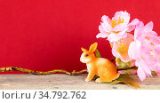 An image of an Easter decoration rabbit and cherry blossoms. Стоковое фото, фотограф Zoonar.com/magann / easy Fotostock / Фотобанк Лори