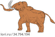 Drawing sketch style illustration of a woolly mammoth, Mammuthus primigenius... Стоковое фото, фотограф Zoonar.com/patrimonio designs limited / easy Fotostock / Фотобанк Лори