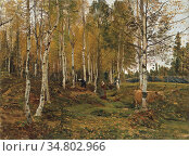 Munthe Gerhard - Birkenwald IM Herbst - Norwegian School - 19th Century... Редакционное фото, фотограф Artepics / age Fotostock / Фотобанк Лори