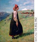 Munthe Gerhard - Budeia Hallingdal - Norwegian School - 19th Century. Редакционное фото, фотограф Artepics / age Fotostock / Фотобанк Лори