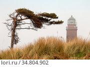 Leuchtturm in Darßer Ort/Deutschland - Lighthouse in Darsser Ort/Germany... Стоковое фото, фотограф Zoonar.com/Bernd Hoyen / easy Fotostock / Фотобанк Лори