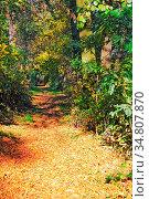 ESY-055322814. Стоковое фото, фотограф Zoonar.com/ArTo / easy Fotostock / Фотобанк Лори