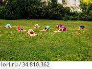 Group of girls relaxing and doing childs pose in yoga on a nature. Стоковое фото, фотограф Zoonar.com/Oksana Shufrych / easy Fotostock / Фотобанк Лори