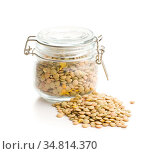 Uncooked dried lentil isolated on white background. Стоковое фото, фотограф Zoonar.com/JIRI HERA / easy Fotostock / Фотобанк Лори