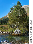 Stream pool of a small mountain river with a beautiful rock with birches on the bank against a background of mountains. Стоковое фото, фотограф Евгений Харитонов / Фотобанк Лори