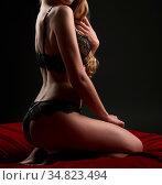 Erotica. Sexy blonde posing in beautiful lace lingerie. Стоковое фото, фотограф Zoonar.com/Andrey Guryanov / easy Fotostock / Фотобанк Лори