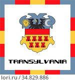 Official government ensigns of Transylvania. Стоковое фото, фотограф Zoonar.com/Murad Gulaliyev / easy Fotostock / Фотобанк Лори
