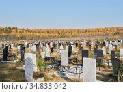 Vast cemetery with fresh graves and an autumn forest on the horizon. Стоковое фото, фотограф Евгений Харитонов / Фотобанк Лори