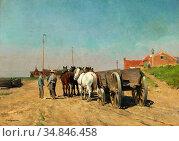 Leemputten Frans Van - Span Paarden Met Kar Op Een Zandige Kustweg... Стоковое фото, фотограф Artepics / age Fotostock / Фотобанк Лори
