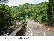 Hakalau Bay, Homakua Coast, Hawaii. Стоковое фото, фотограф Alexandra Buxbaum / age Fotostock / Фотобанк Лори