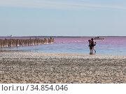 Туристы на розовом озере Сасык-Сиваш у города Евпатории, Крым. Редакционное фото, фотограф Николай Мухорин / Фотобанк Лори