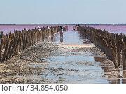 Останки деревянной плотины на розовом озере Сасык-Сиваш у города Евпатории, Крым. Редакционное фото, фотограф Николай Мухорин / Фотобанк Лори