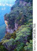 Rock faces, forests, Blue Mountains National Park, NSW, Australia. Стоковое фото, фотограф R. Kunz / age Fotostock / Фотобанк Лори