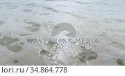 Shallow wave reaching the coast 4k. Стоковое видео, агентство Wavebreak Media / Фотобанк Лори